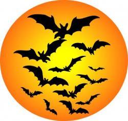 Sí, Señora Oscura!! - Especial Halloween 2010 - XXL