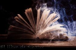 El libro de Shaire