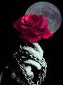 Deadly Reborn // Renacer mortífero