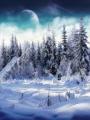 El retorno del Invierno