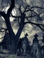 En Las Sombras De La Muerte.